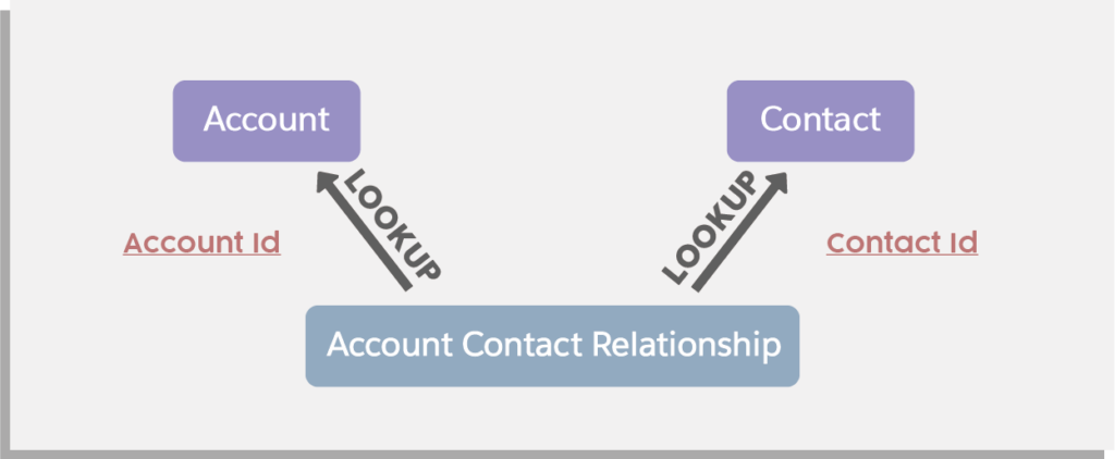 Account Contact Relationship Data Structure